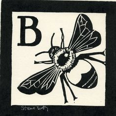 B is for Bee linocut designed and hand printed by Steve Duffy in his Sussex studio.These prints were originally made to help my son,Freddie,to