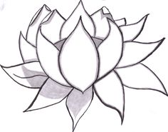 flowers drawings pencil flower easy simple drawing draw sketches sketch outline freelargeimages lotus