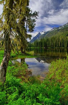 """My novel """"Promise"""" leads to places like this . Fish Lake, Wenatchee National Forest, photo by desiree The Places Youll Go, Places To See, Beautiful World, Beautiful Places, Beautiful Scenery, Wenatchee National Forest, Evergreen State, Washington State, Washington Hiking"""
