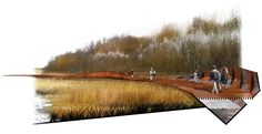 HASSELL | Projects - Cronton Colliery