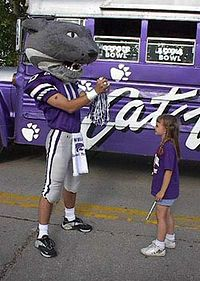 TIL Kansas State used a real bobcat named Touchdown as its mascot from Touchdown I was captured in Idaho and donated to K.C but died from injuries from fighting a porcupine before it arrived in Kansas. Football Stadiums, Football Field, Football Team, Kansas State University, Kansas State Wildcats, Football Hall Of Fame, College Football, Missouri Valley, Coach Of The Year