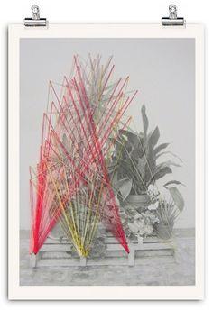 My Little Garden Collection. 2012 by Azucena González, via Behance