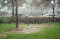 STORM PROOF YOUR HOME INTERIOR THIS STORM SEASON When we think of storm season we often think of just the exterior of our homes. Having good interior storm preparation is just as important as on the outside.  Read more: http://www.jameshomeservices.com/storm-proof-your-home-interior-this-storm-season/