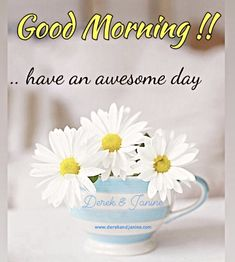 Good Morning Friends Images, Good Morning Sunday Images, Good Morning Love Messages, Good Morning Beautiful Images, Good Morning Flowers, Morning Messages, Good Morning Quotes, Good Morning Greeting Cards, Good Morning Greetings