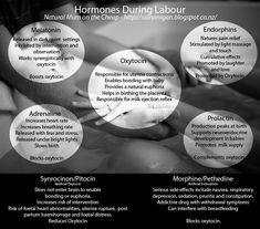 Hormones In Labor