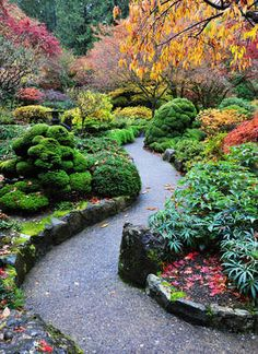 Tuinposter van Japans pad