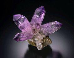 Amethyst from Las Vigas, Mexico credit: Yasu Okazaki