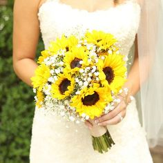 This eye-catching bouquet shows off bright sunflowers! Filled in with aster monte casino, baby's breath, and wrapped with ribbon, this bouquet would be great for the DIY bride. Shop sunflowers, aster monte casino, and baby's breath year-round at GrowersBox.com!