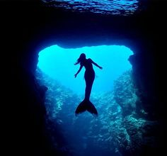 Mermaids ♥