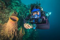 As divers who have perfected their buoyancy know, finally getting it right is a watershed moment that opens the door to true freedom underwater.
