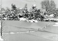 Parque de la Ciudadela. Barcelona Dic. 1962