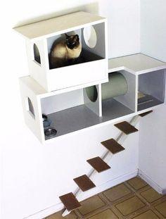 casa para gatos com escada