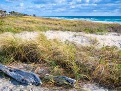 Top 10 Florida Beaches : Best Beaches in Florida : Travel Channel