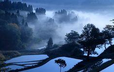 Terraced rice fields in Kamou, Niigata, Japan