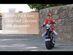 Battery Pack Easy Detached Electric Scooter Harley Citycoco with Bluetoo...