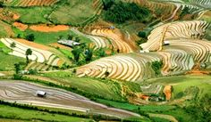 Recunoaște locul Hoi An, Vietnam, Delta Du Mekong, Hanoi, Vineyard, Golf Courses, Outdoor, Cruises, Travel