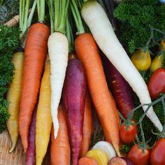 Kolorowe marchewki. #marchew #marchewka #carrots #warzywa #vegetables #warzywniak #zdrowazywnosc #zdrowie #healthy #witaminy by w.legutko