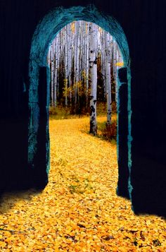 Gate to beautiful nature Beautiful World, Beautiful Places, Beautiful Pictures, Foto Art, Mellow Yellow, Blue Yellow, Belle Photo, Arches, Mother Nature