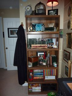 """""""Harry Potter"""" Room - Shelves for class books, wand, glasses, pictures of owls, Quidditch pictures, and all the things a young wizard needs.  Do not forget to watch out for the Basilisk coming around the corner or through the pipes."""