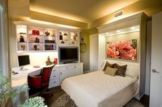 Maximize Small Spaces: Murphy Bed Design Ideas...this is very attractive...