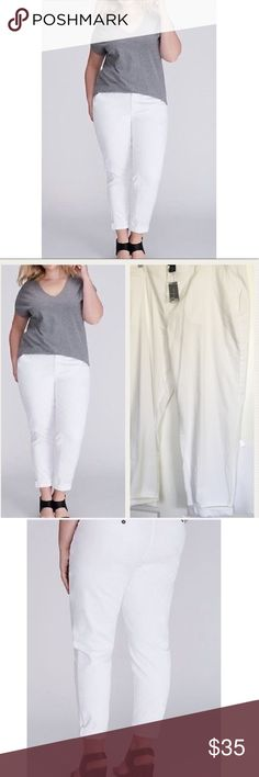 "Low rise boyfriend chino pants Lane Bryant Lane Bryant low rise boyfriend chino pants, yacht pants, stretch cotton/lyocell/spandex, lightweight and comfortable, grommet-type buttons, plus sz 24 waist = 46"" rise = 12.5"" inseam = 29"" cuffed or 32"" uncuffed, there is a little smudge on the cuff from skimming the ground, NWT  4S4 Lane Bryant Pants"