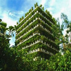 URBAN FOREST The Flower Tower  Architects: Edward Francois  Location: Paris, France  Description: The nickname for this social housing tower in Paris, is the 380 pots in which bamboo was planted. The inventive ways in which Parisians green their French balconies was the inspiration behind this radical gesture. One meter high concrete pots were set into the structure of the protruding balconies, with the steel balusters support the water system for the plants.