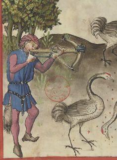 Latin 9333 (BnF), Ibn Butlan, Tacuinum Sanitatis, 15th c. (1st half), folio 68v. Source: http://gallica.bnf.fr/ark:/12148/btv1b105072169/f150.planchecontact