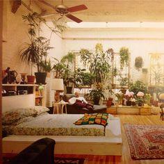 Loft + plants