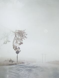 Todd Hido - A Road Divided (published 2010)