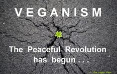 <3 the vegan revolution <3