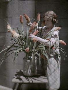 An Autochrome of a Lady arranging Red Hot Pokers