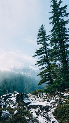 Mountain View ★ Download more Nature Inspired iPhone Wallpapers at…