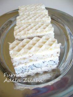 Adela Zilahi: Furnica