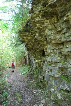 Rocky wall guides you as you hike the Bruce Trail.