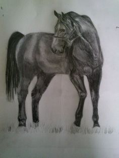 the best drawing paper for graphite pencil art pinterest