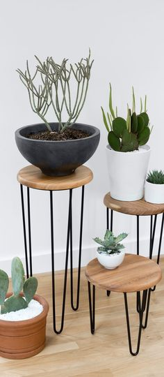 Marrying Old World and modern design influences, this table set features a rich Mexican parota wood top and streamlined black steel legs. Style them on their own or as a set. When paired together, they create a stunning side table vignette or plant holder set. #ad