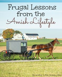 Frugal Lessons From The Amish Lifestyle (a NORMAL old fashion lifestyle)