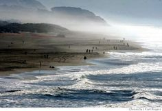 People at San Francisco Beaches | Ocean beach in San Francisco is still open people are walking surfing ...