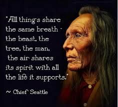 Native American proverb 3                                                                                                                                                      More