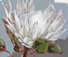 Protea Art, Protea Flower, Art Floral, Tea Bag Art, Oil Painting Abstract, Fruit Painting, Simple Art, White Art, Botanical Art
