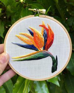 42 trendy bird of paradise embroidery pattern Basic Embroidery Stitches, Embroidery Flowers Pattern, Hand Embroidery Stitches, Embroidery Hoop Art, Hand Embroidery Designs, Embroidery Techniques, Bordado Floral, Contemporary Embroidery, Birdwatching