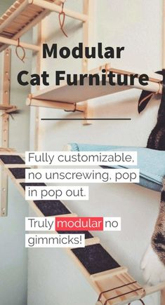 Modular cat furniture, bowls, toys and more! But the coolest part is our modular cat furniture! Attach to the wall in your apartment freeing floor space up. Modern Cat Furniture, Modular Furniture, Furniture Sets, Furniture Design, Painted Furniture, Furniture Websites, White Furniture, Furniture Plans, Benny And Joon