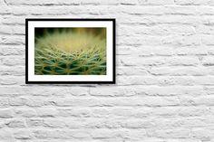 Fractal fine art photography botanical by IonAnthosPhotography, $28.00
