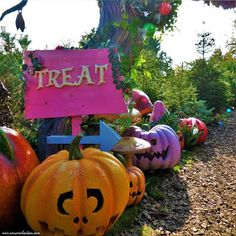 Halloween at Chessington World of Adventures: a Review
