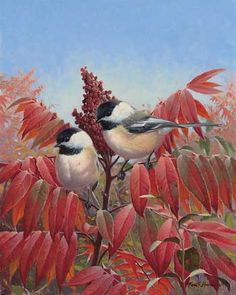 Autumn's Elegance.... Painting by M. Hanson....a pair of chickadees perched on branch of sumac thick with red leaves.