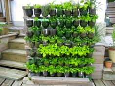 milk bottle garden - Google Search