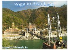 We are simple Yoga-Teacher-Training-in-Rishikesh school based in Rishikesh, India. Focusing traditional ancient style of Hatha-Yoga, Vinyasa-yoga.   http://yogainrishikesh.in/