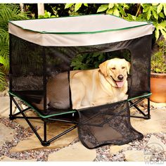 This pop up kennel provides shade and a spot to secure your dog while camping.