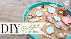 Summer Seashell Candles | lifestyle