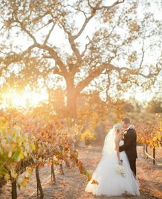 Il matrimonio in Langhe e Roero é diventato un must have... Se ci aggiungi i colori dolci e caldi ...